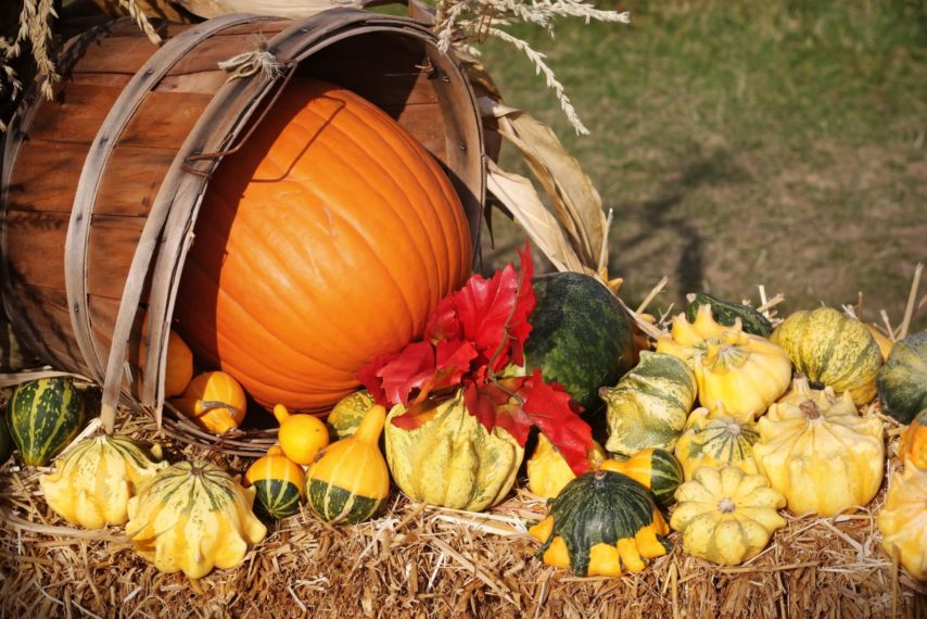 What Is Samhain Traditionally And In Modern Times?