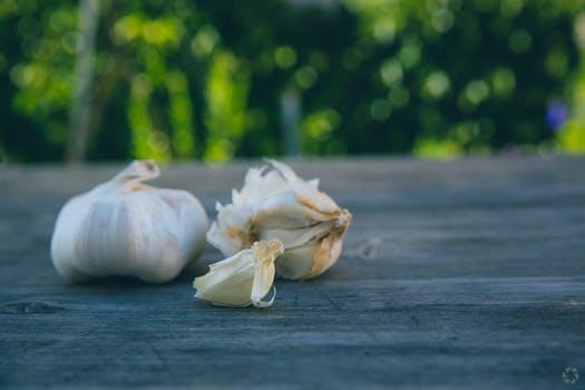 garlic bane