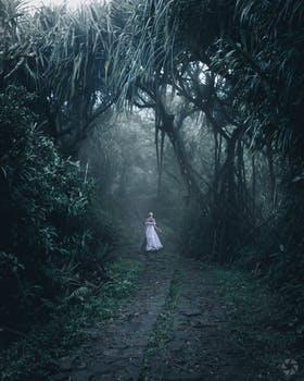 Celtic Fairy Caller